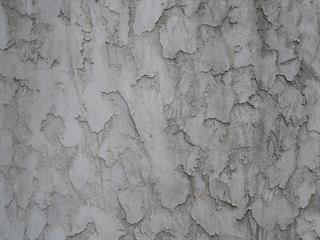 rough texture stucco