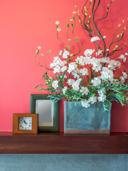 Trendy Colors Coral Home Design