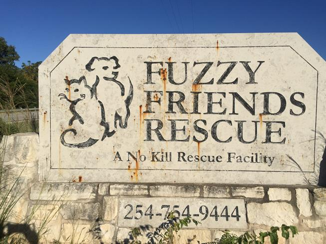 Fuzzy Friends Rescue Sign (Before Cleaning and Re-painting)