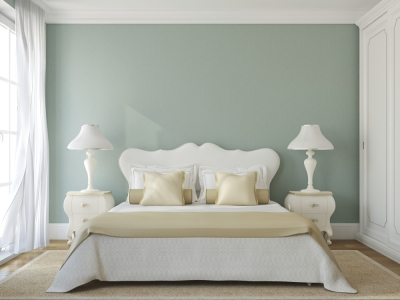 Green Colored Wall in Guest  Room