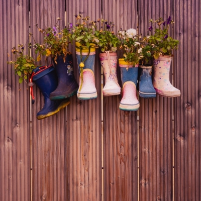Multiple Plants Growing out of Boots Hanging on a Wall
