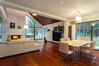 Modern White Living Room with Wood Floors and Wood Ceiling