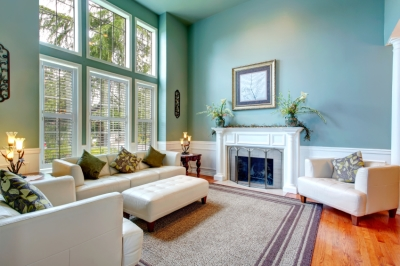 Matte Sheen in Living Space with Light Blue Walls